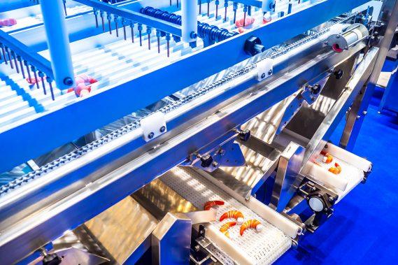 Limpieza y desinfección de circuitos y sistemas